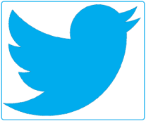 Twitter Link 300 x 250